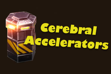 Get the Most Out of Your Cerebral Accelerators