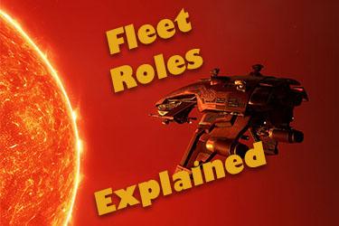 Roles in a NPSI PvP Fleet